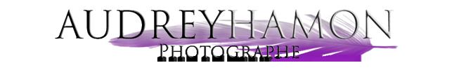 Audrey Hamon, Photographe logo